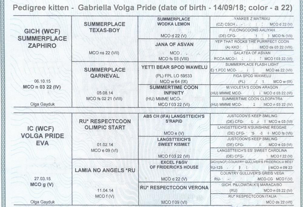 Gabriella Volga Pride